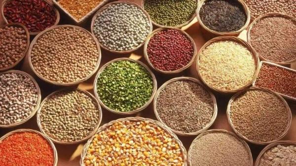 成都养老院一暄康养为您讲解冬季饮食养生(一)-粗粮与细粮