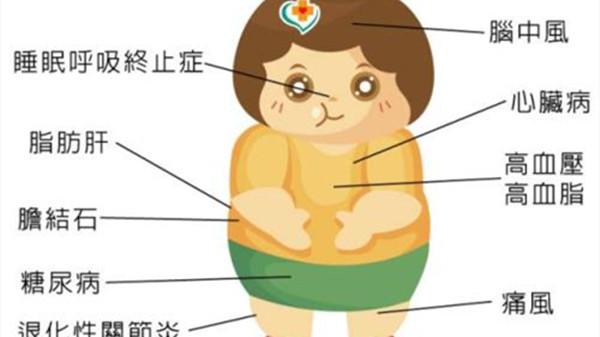 成都养老院一暄康养提醒老年人过度肥胖损健康容易招来疾病(1)-肥胖1
