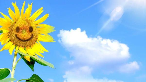 春季养生不简单,一暄表示这八点要格外注意(二)