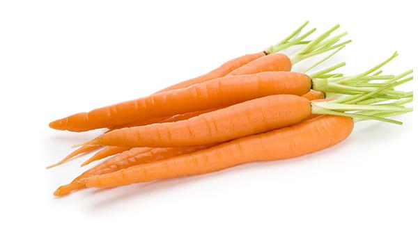成都好的养老院一暄康养冬时令蔬菜推荐——胡萝卜