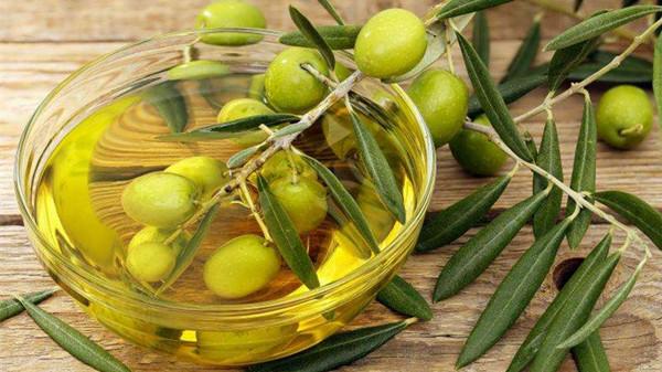 【一暄康养】橄榄油有什么健康益处?(上)