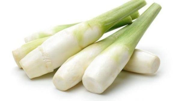 成都养老院夏季时令蔬菜推荐——茭白