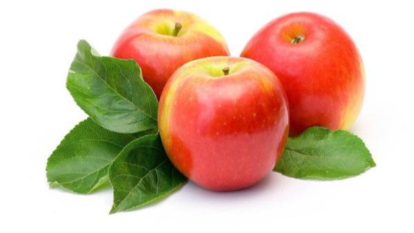 成都养老院夏季水果养生经验分享:增强大脑功能的水果推荐