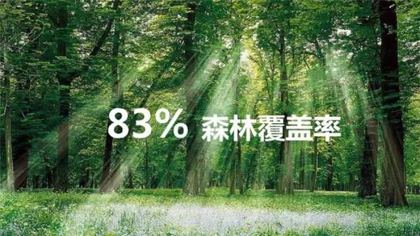 83%森林覆盖率