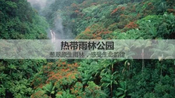 热带森林公园