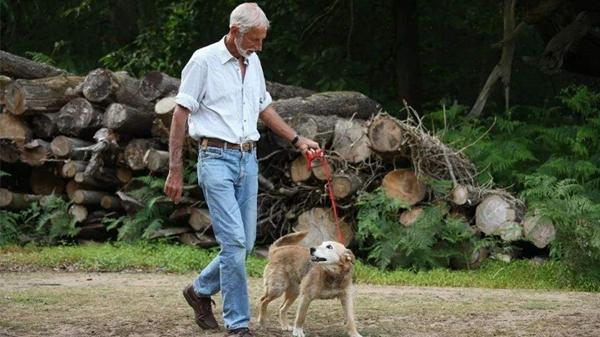 成都养老院一暄康养推荐老年人娱乐用品有哪些(4)-老年人养宠物