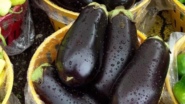 淡化色斑吃这些,成都金牛区养老院都说好——蔬菜篇2茄子
