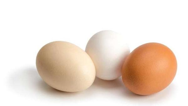 成都金牛区养老院教您做琉璃蛋球和鸡蛋蒸肉末图1