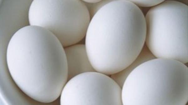 成都金牛区养老院教您做豆腐炒鸡蛋和鲜奶炒鸡蛋图1