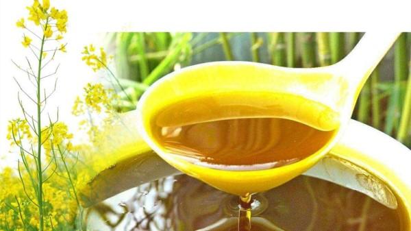 成都羊犀立交附近的高端养老机构一暄康养为您介绍常用植物油的种类及功效-菜籽油