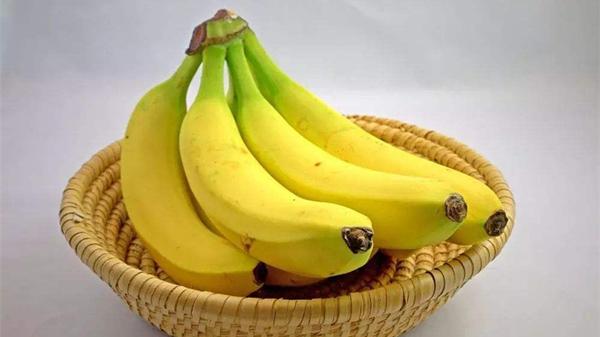 适合高龄老人吃的水果,成都金牛区养老院一暄康养为您介绍-香蕉