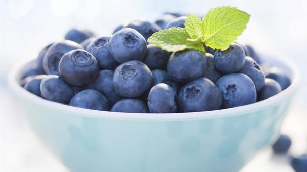 成都养老院一暄康养分享一种夏季水果——蓝莓(五)2