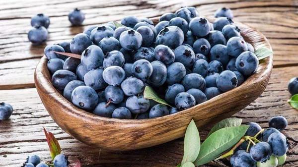 成都金牛区养老院一暄康养分享一种夏季水果——蓝莓(三)