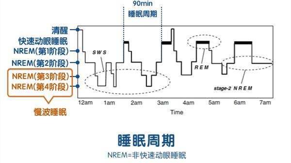 成都养老院一暄养生堂:为什么午觉睡到自然醒反而更困?(一)-睡眠周期