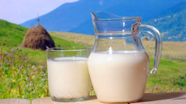 成都青羊区养老院-一暄康养-饮食里面蕴含丰富的健康知识-牛奶