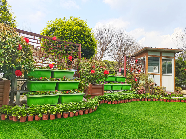 一暄花园趣改造,用温暖迎接春天