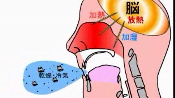 成都养老院一暄康养提醒在家也能自己做体检(5)-用嘴呼吸1