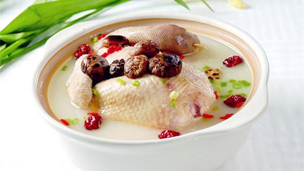 成都养老院经验分享-冬季如何增御寒能力-鸡汤3