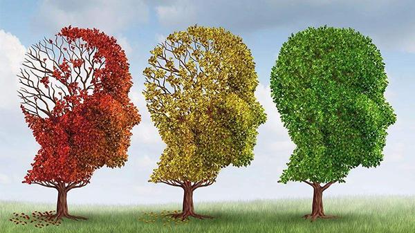 成都高端养老院一暄康养经验分享——哪些人易患失智症(一)