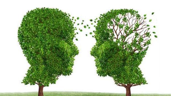 成都高端养老院一暄康养经验分享——哪些人易患失智症(二)