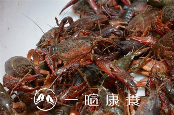 清洗小龙虾