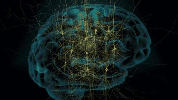 成都养老院一暄康养介绍老年人脑神经痛怎么办(二)2