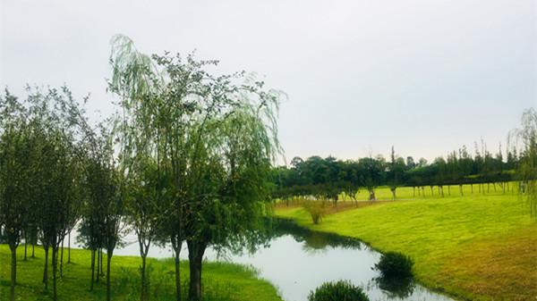 两河公园一角