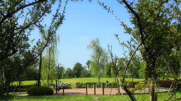 成都西三环附近的高端养老院一暄康养旁边的两河公园内适合长者散步的健身小道