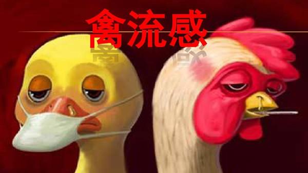 成都金牛区养老院一暄康养介绍如何有效预防禽流感-禽流感2