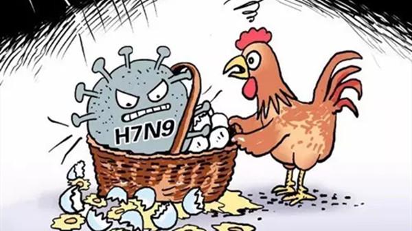 成都金牛区养老院一暄康养介绍如何有效预防禽流感-禽流感1