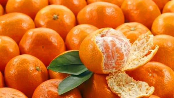 成都青羊区养老院-一暄康养推荐喉咙痛喉咙发炎怎么办(一)-橘子1