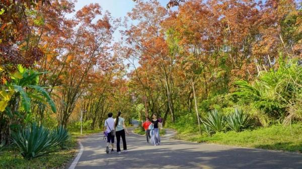 成都金牛区中海国际附近的高端养老机构一暄康养分享走路的注意事项 (7)