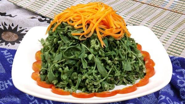 成都温江附近的高端养老院一暄康养提醒你吃野菜的注意事项 (5)