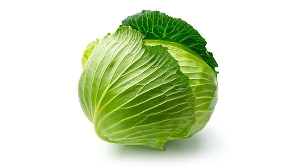 成都好的养老院一暄康养冬季时令蔬菜推荐——卷心菜