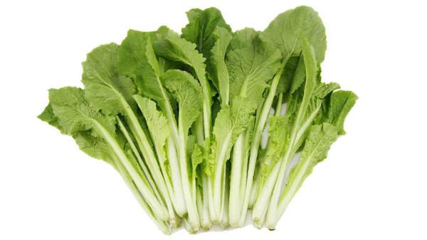 成都养老院冬时令蔬菜推荐——小白菜