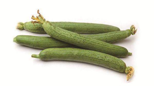 成都养老院夏季时令蔬菜推荐——丝瓜