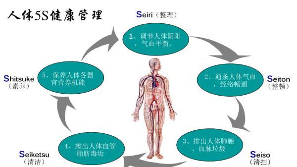 成都养老院|一暄康养为您介绍人體健康5S管理理念