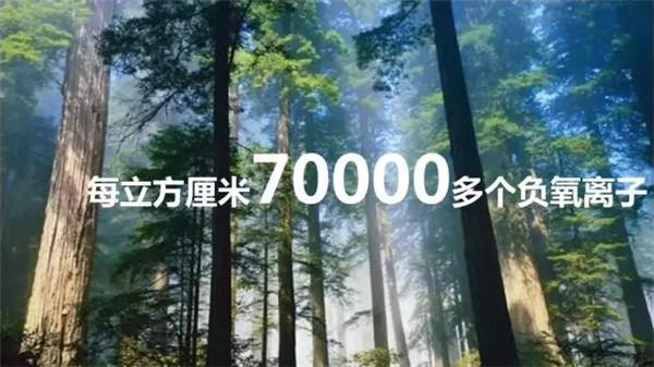 70000多个负氧离子