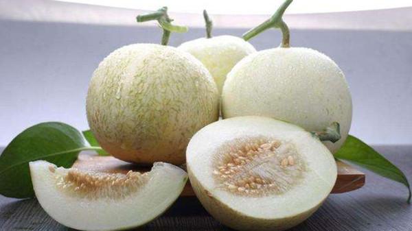 成都养老院一暄康养提醒胃寒不能吃的水果(4)-甜瓜
