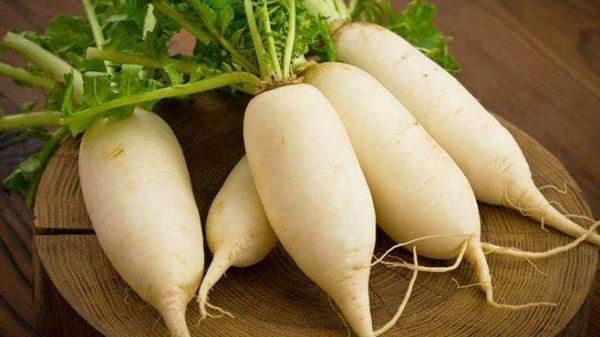成都高端养老院为您揭晓尿酸高患者的饮食福音-萝卜