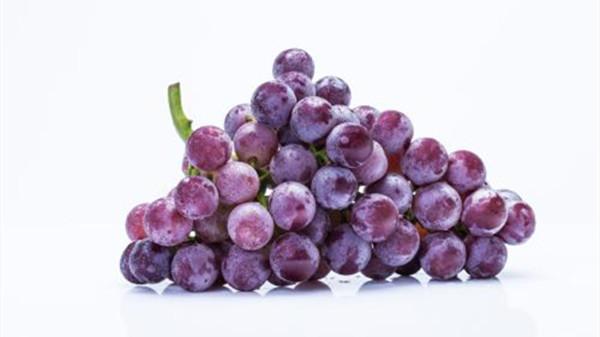 成都养老院一暄康养提醒9种水果可以肝脏护理(2)-葡萄2
