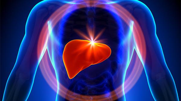 成都金牛区养老院一暄康养提醒9种水果可以肝脏护理(3)