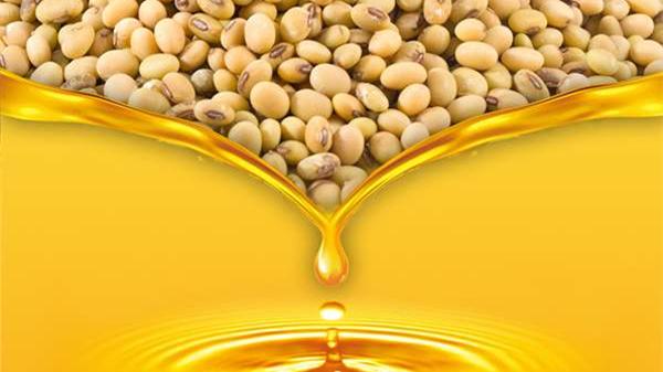 6种健康食用油,成都养老院提醒老年人要牢记(一)-大豆油