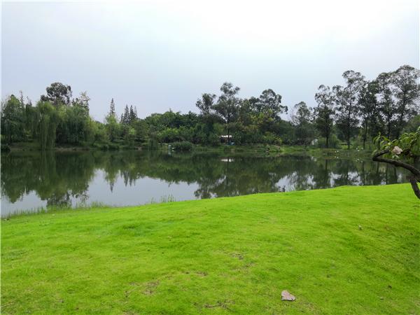 6-初步打造好的一部分两河森林公园,此处距成都养老院一暄康养两河公园店约700米