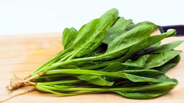 预防低钾血症的食疗方法,成都金牛区养老院一暄康养为您分享-菠菜