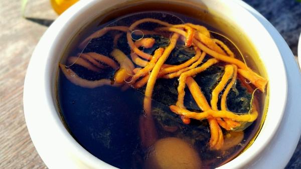 成都好的养老院一暄康养为您推荐5种营养暖身食谱(四)-虫草乌鸡汤