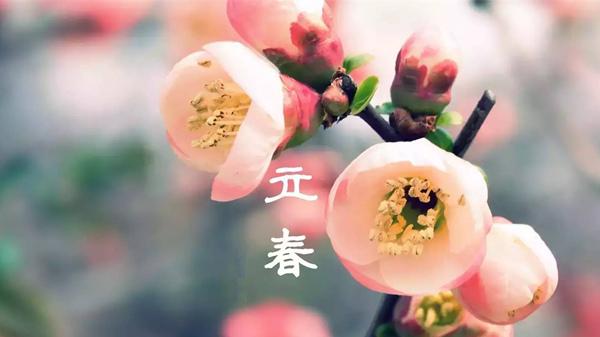 春季养生饮食原则大揭秘,跟着一暄涨知识(二)