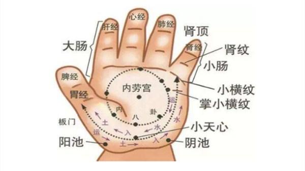半月谈-手指穴位