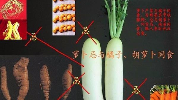 成都青羊区高端养老院一暄康养告诉您老年人吃蔬菜有哪些搭配禁忌图片1
