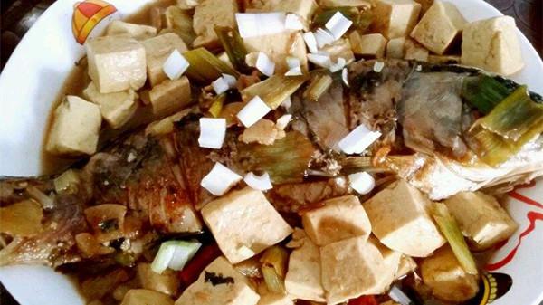 成都养老院经验分享-一暄康养-适合中老年的健康饮食搭配-豆腐鱼